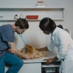 Lushington Connects African American History to Early Veterinary Medicine